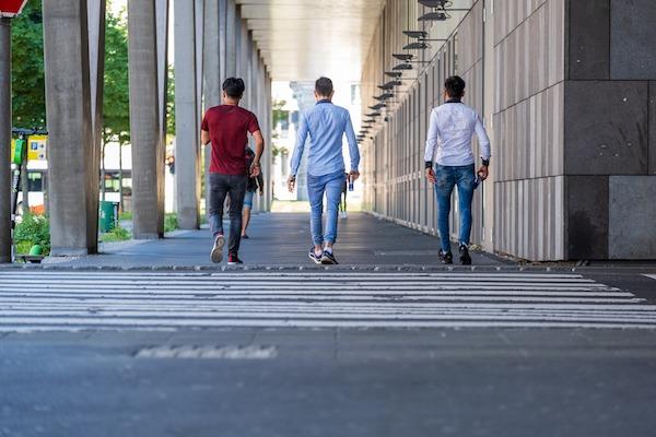 estudio luchemos vida prioridad paso peaton caba