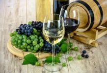 industria vitivinicola cobertura seguro integral chubb