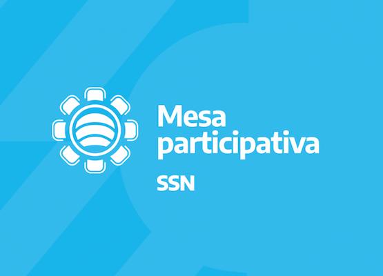 primeros encuentros mesa participativa ssn